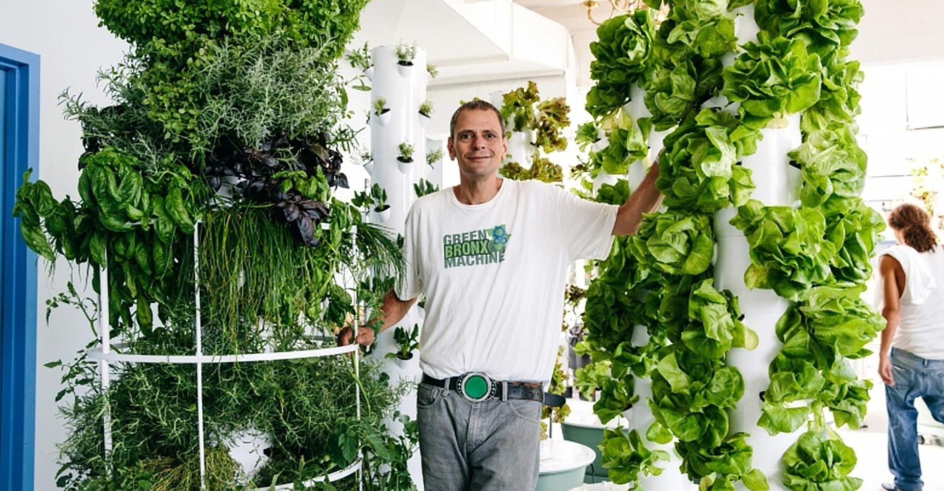 Schon mal was von Urban Gardening gehört?