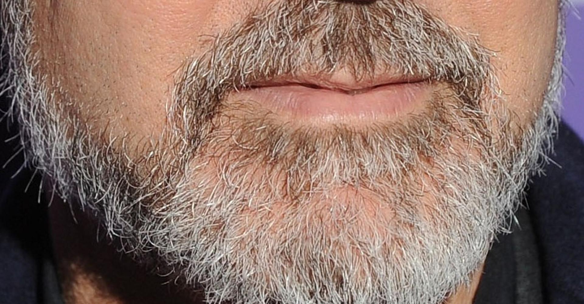 Pizzetto o baffo? Indovina chi ha la barba così!