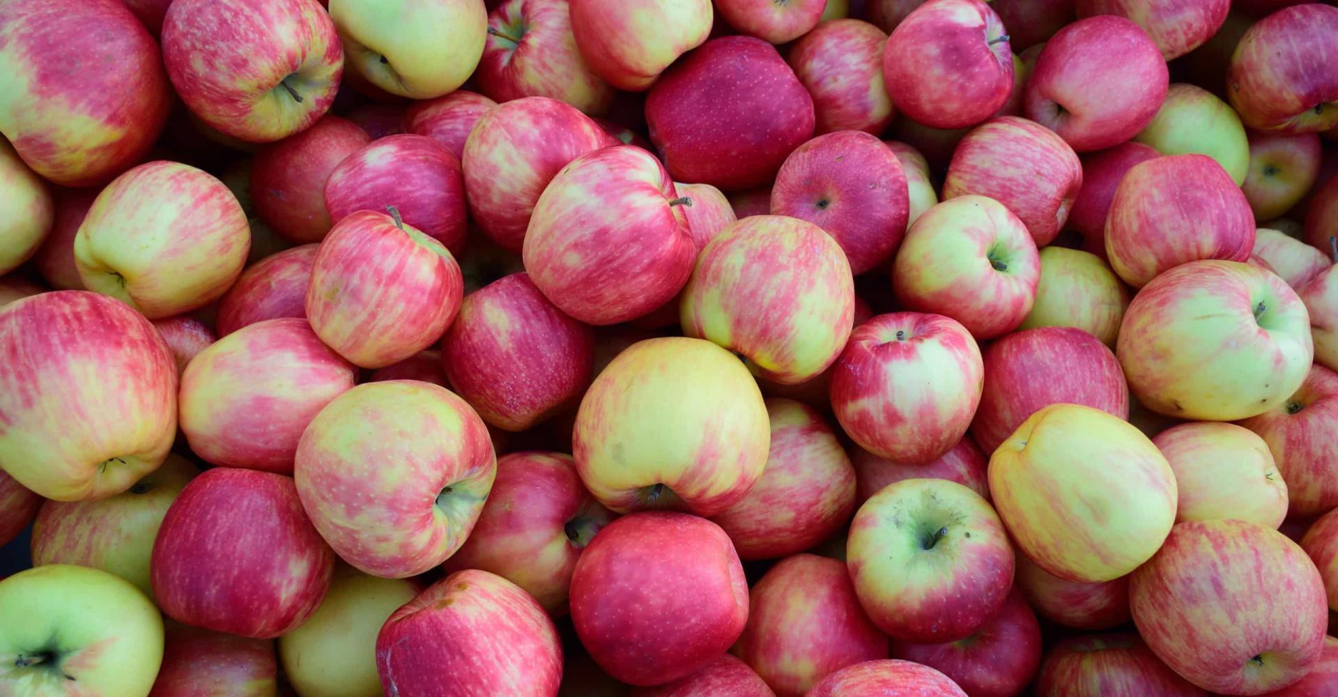 Is appelazijn echt een wondermiddel?