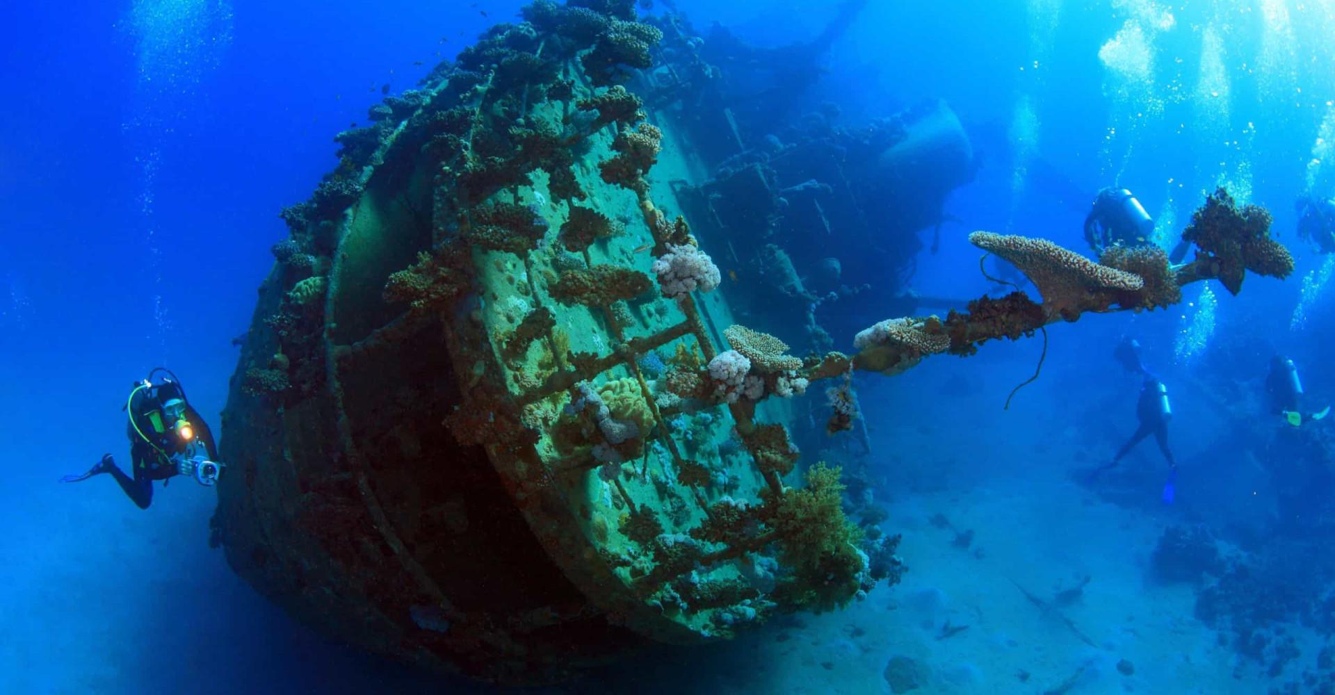 ¡Están escondidos en el fondo oceánico!