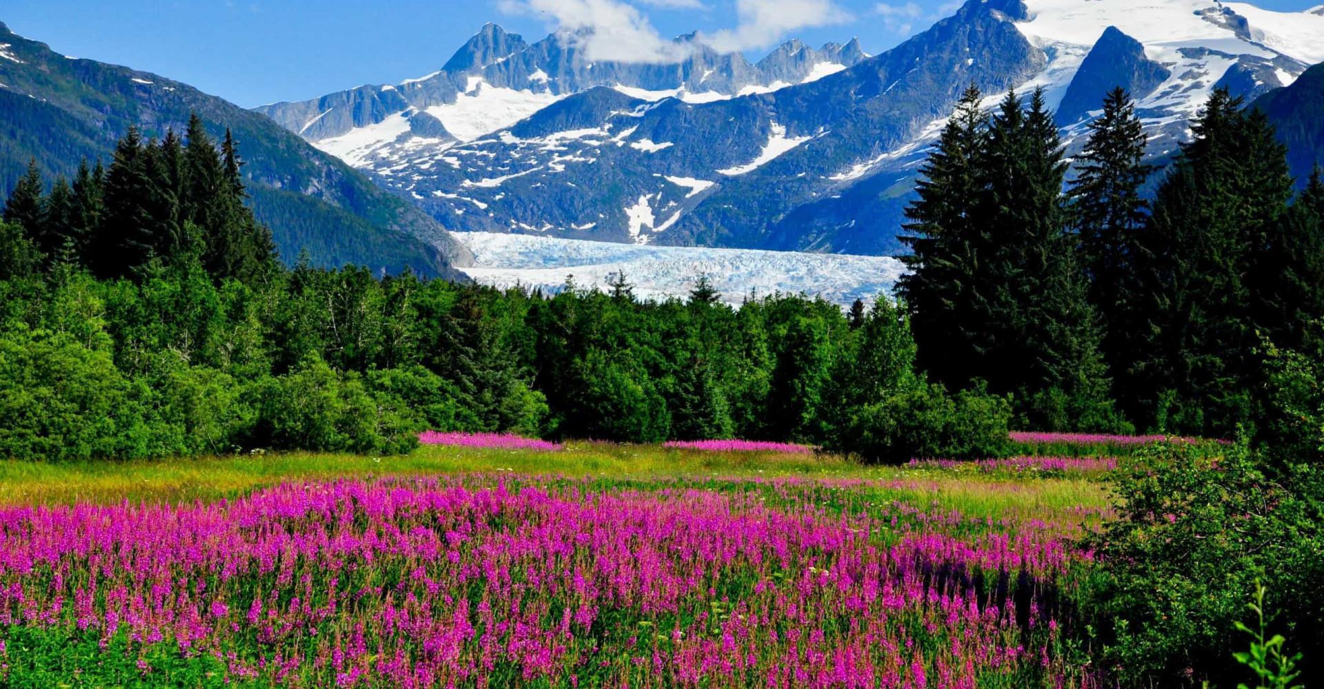 Auf nach Alaska: Entfliehen Sie der Sommerhitze