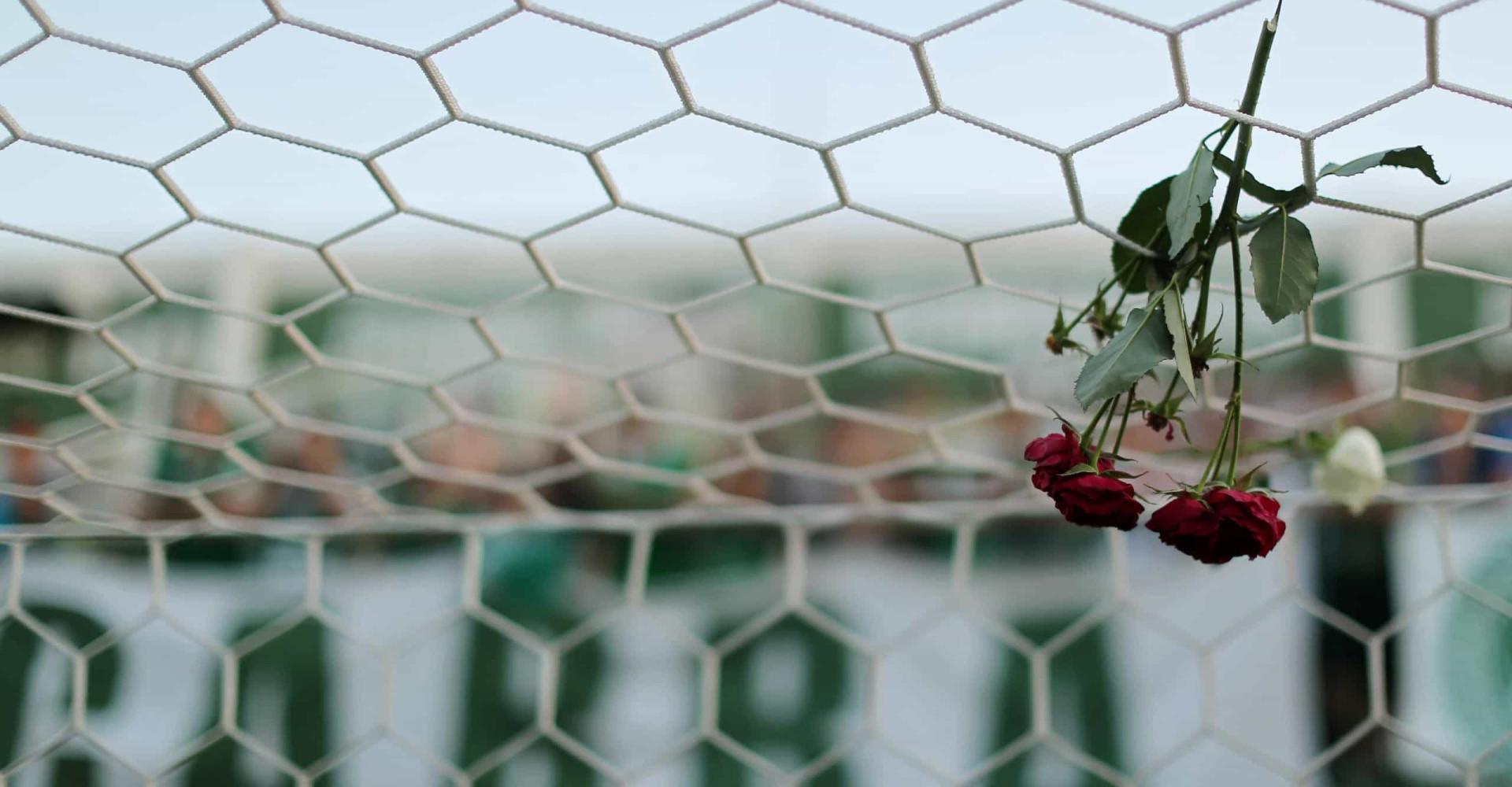 Marcados por el horror: las peores tragedias del deporte mundial