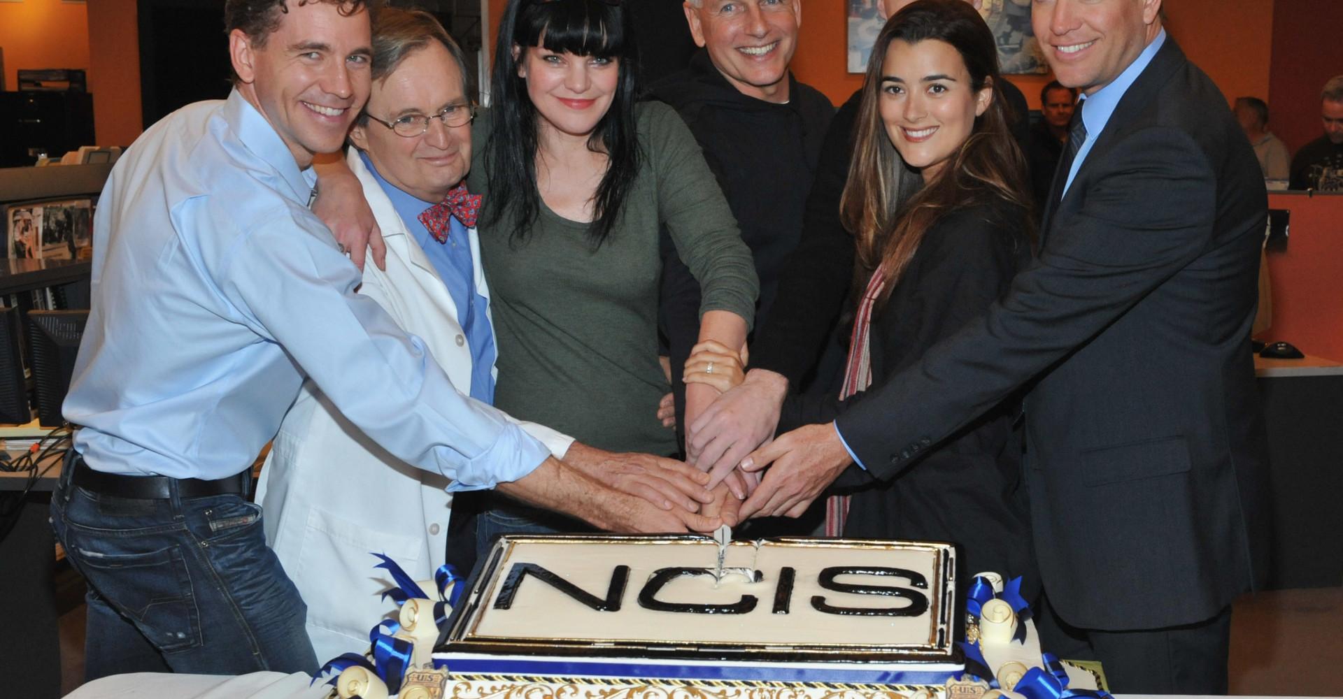 'NCIS', una de las series más exitosas de la televisión