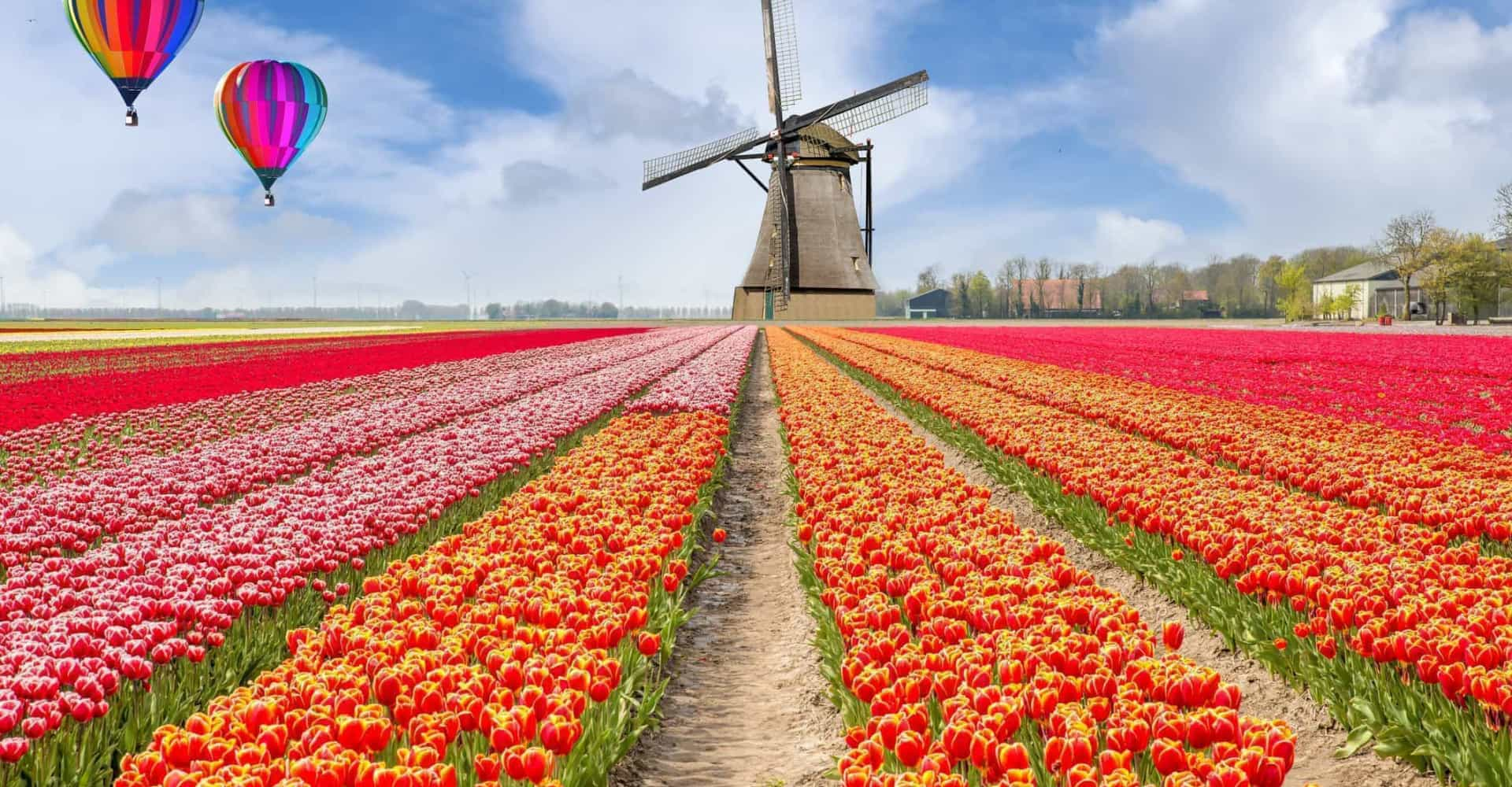 The top destinations to visit during spring