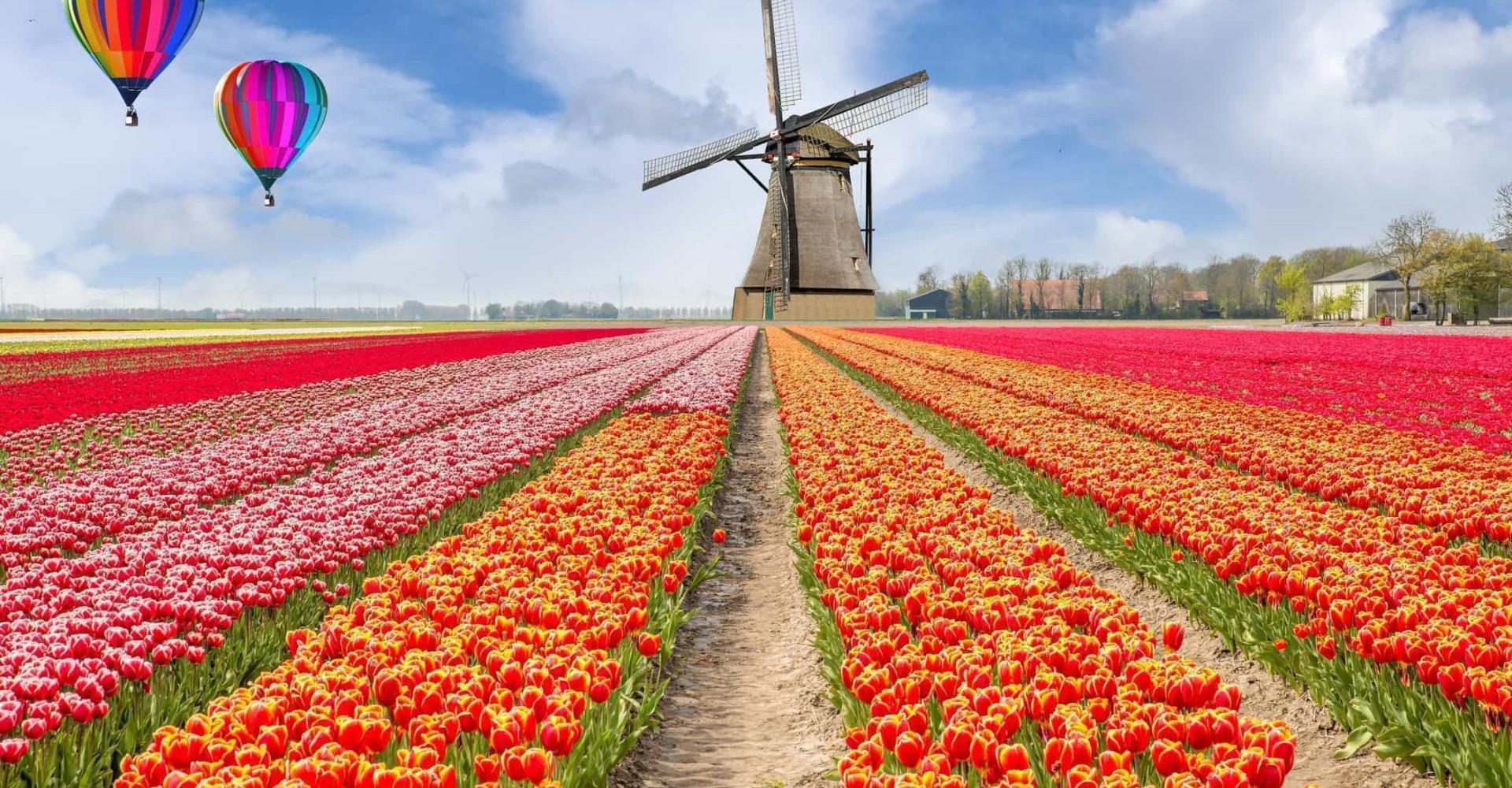De beste destinasjonene å besøke om våren