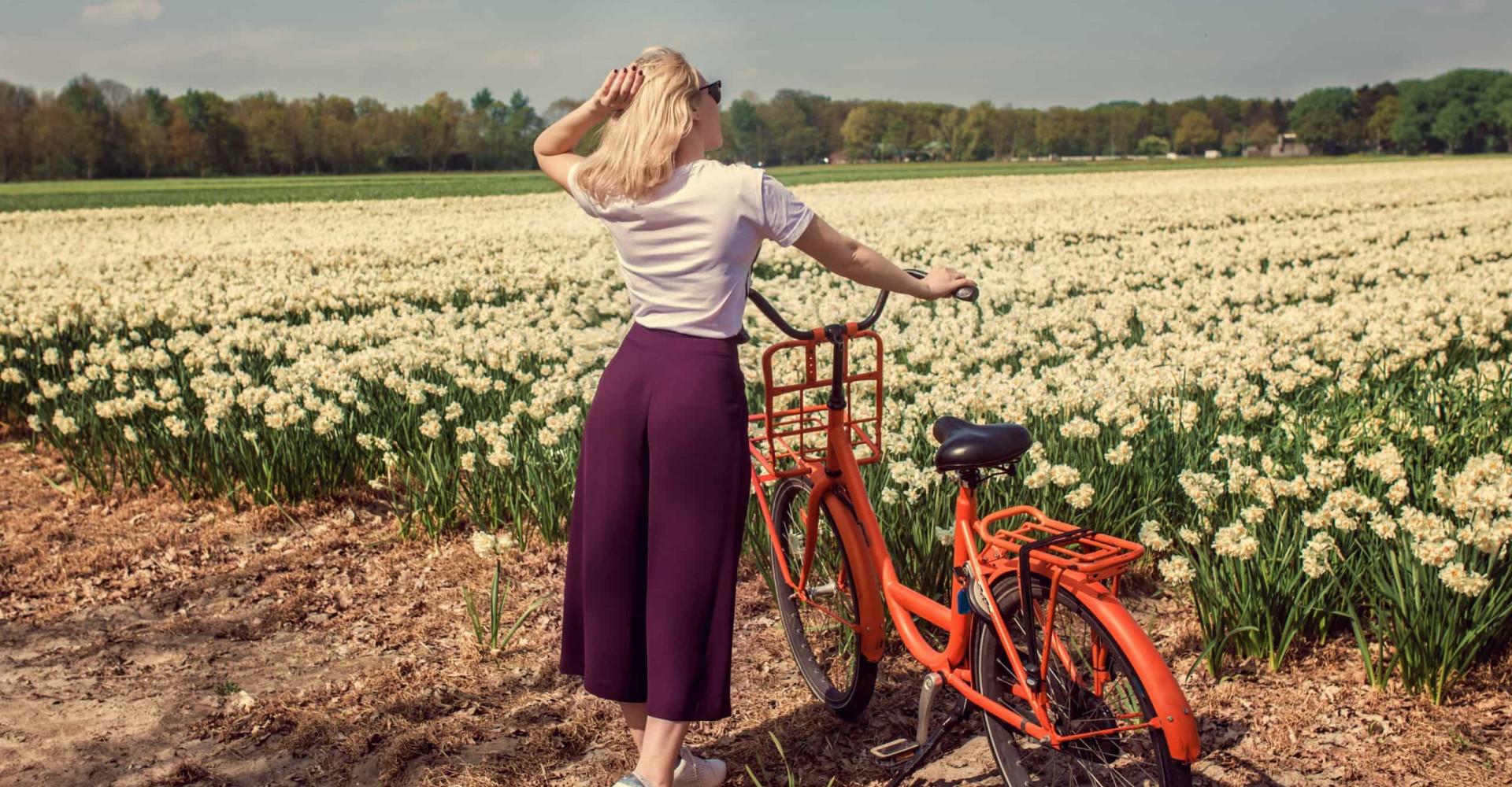 De mooiste fietsroutes van Nederland