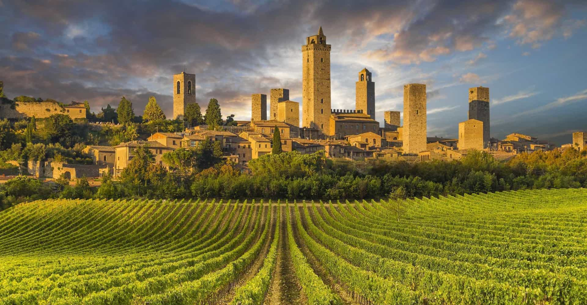 Where to follow the world's favorite wine routes