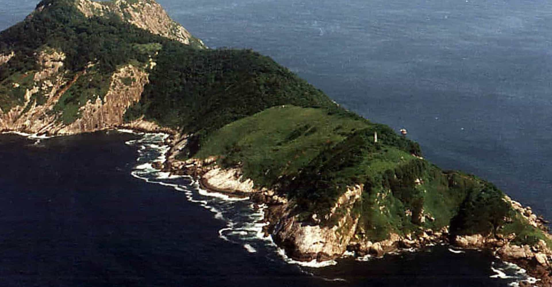 'Snake Island': the world's deadliest place