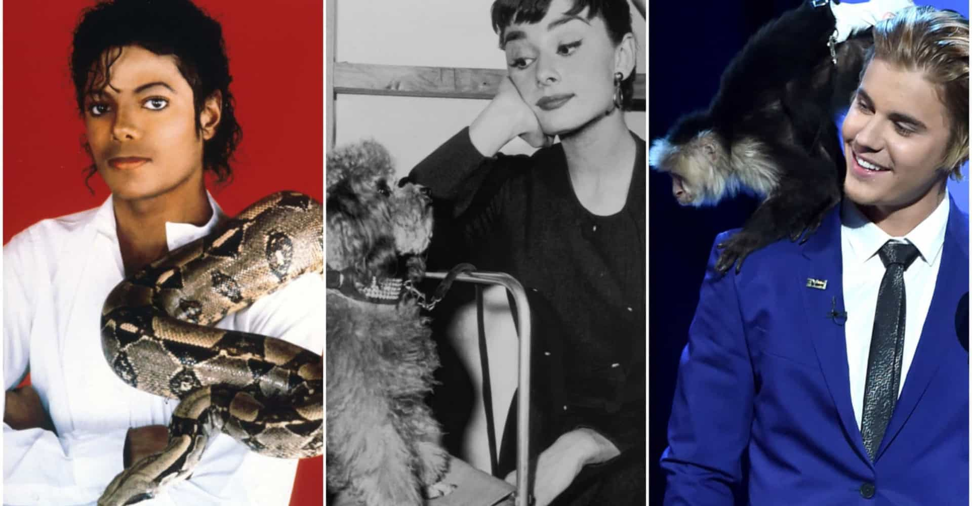 Animal antics: celebs and their exotic pets