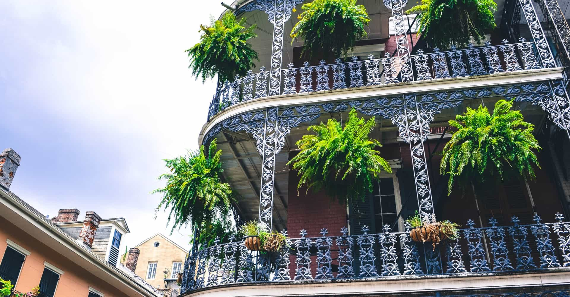 Things you never knew about New Orleans—but really should