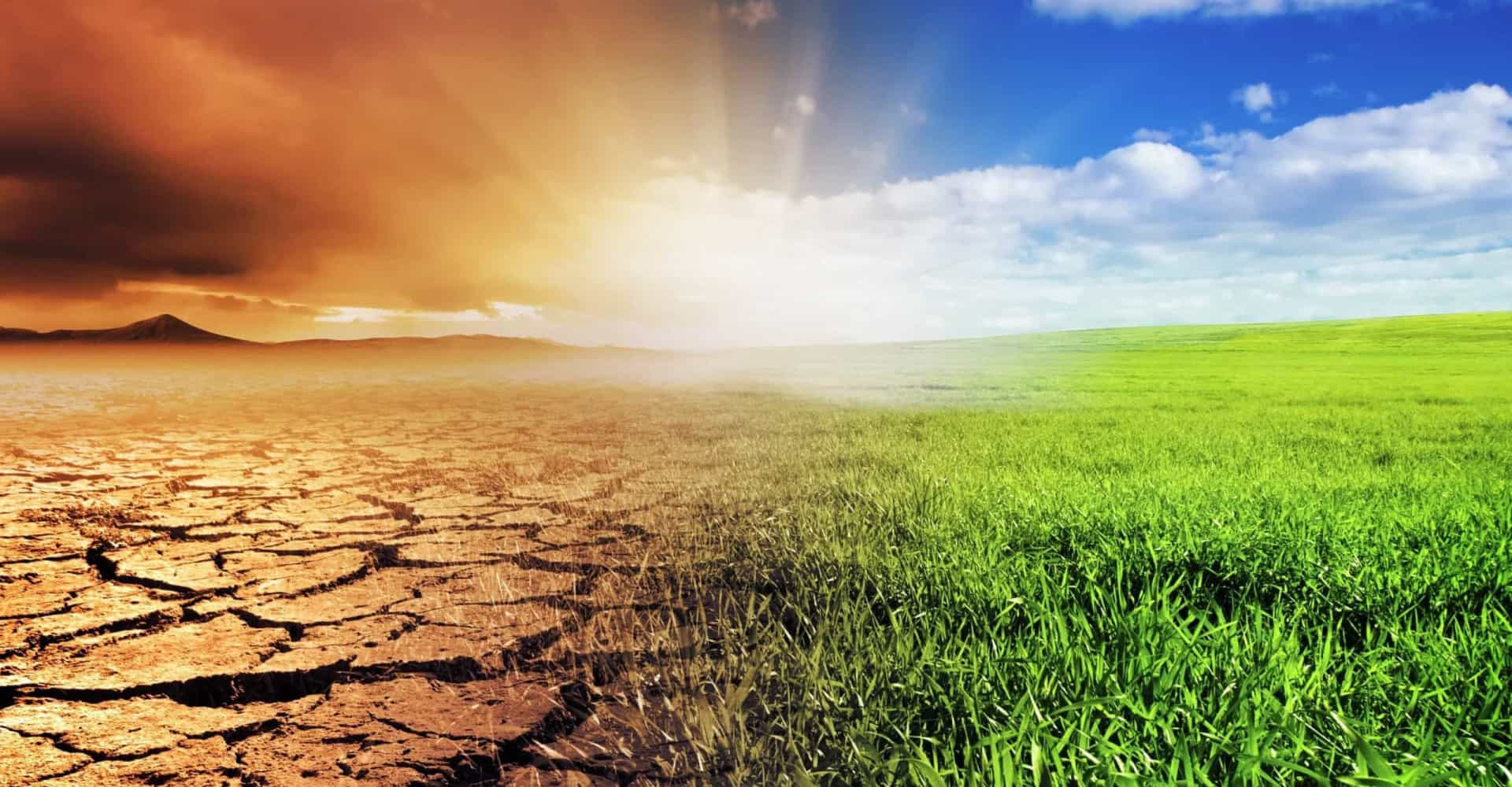 Wat merken we van klimaatverandering in Nederland?