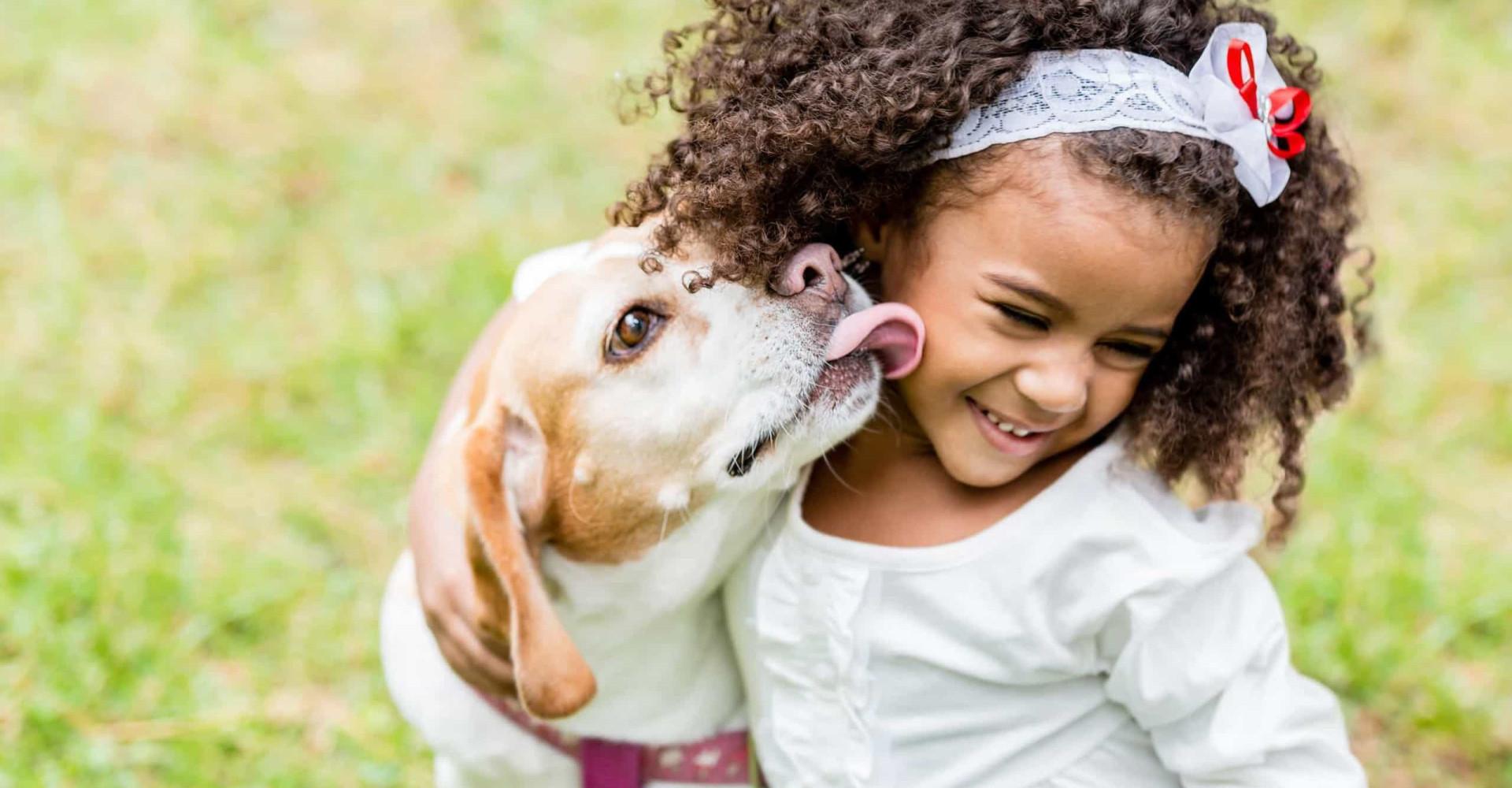Les races de chien idéales pour la vie de famille