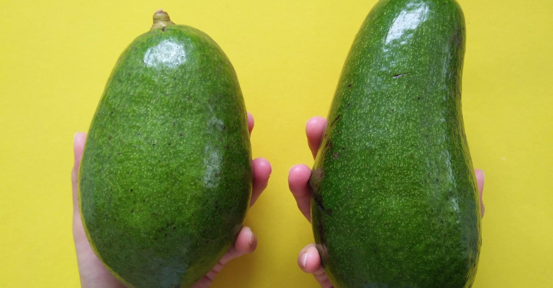 Er groeien avocado's zo groot als je hoofd in Australië