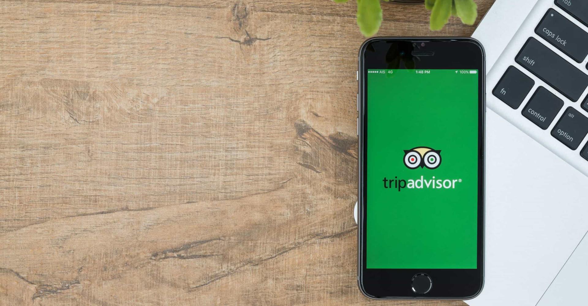 The most absurd TripAdvisor reviews