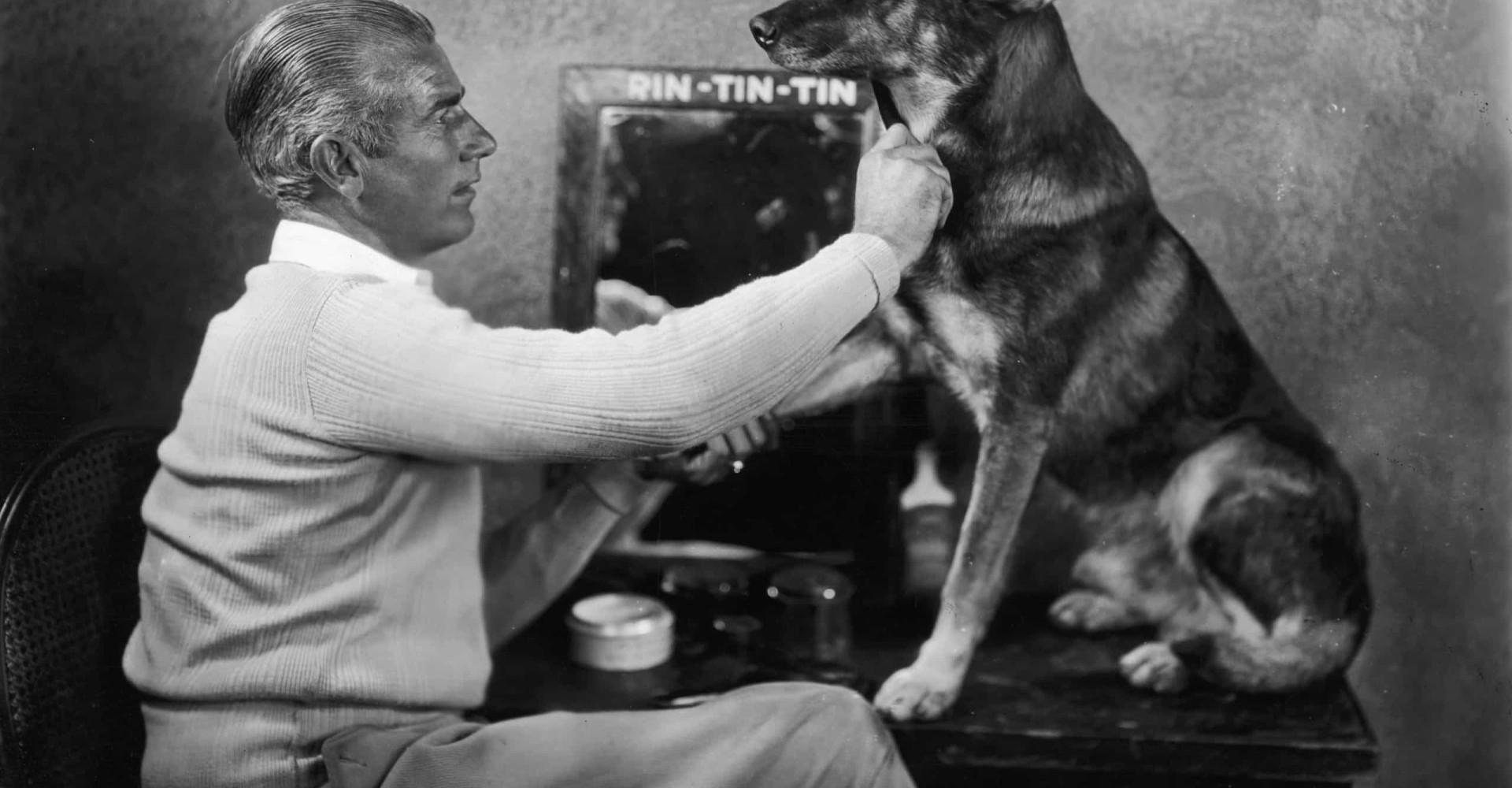 De beroemdste honden aller tijden