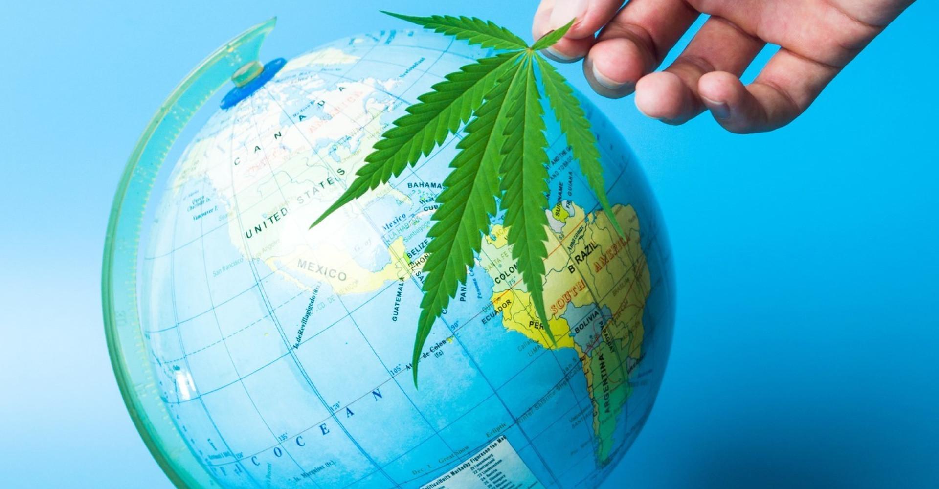 달라지는 전세계의 대마초 법안
