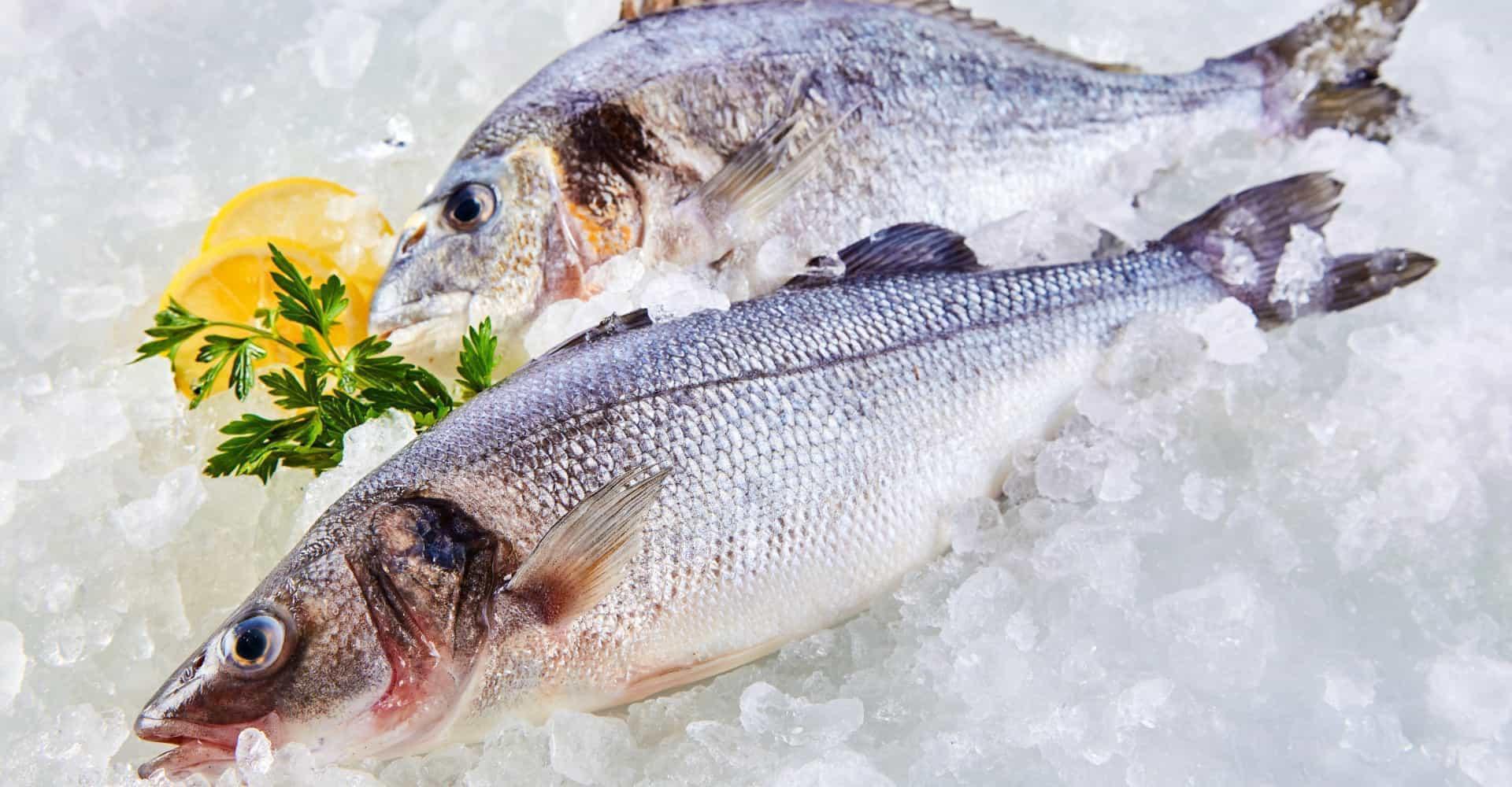 Tips voor het herkennen van verse vis