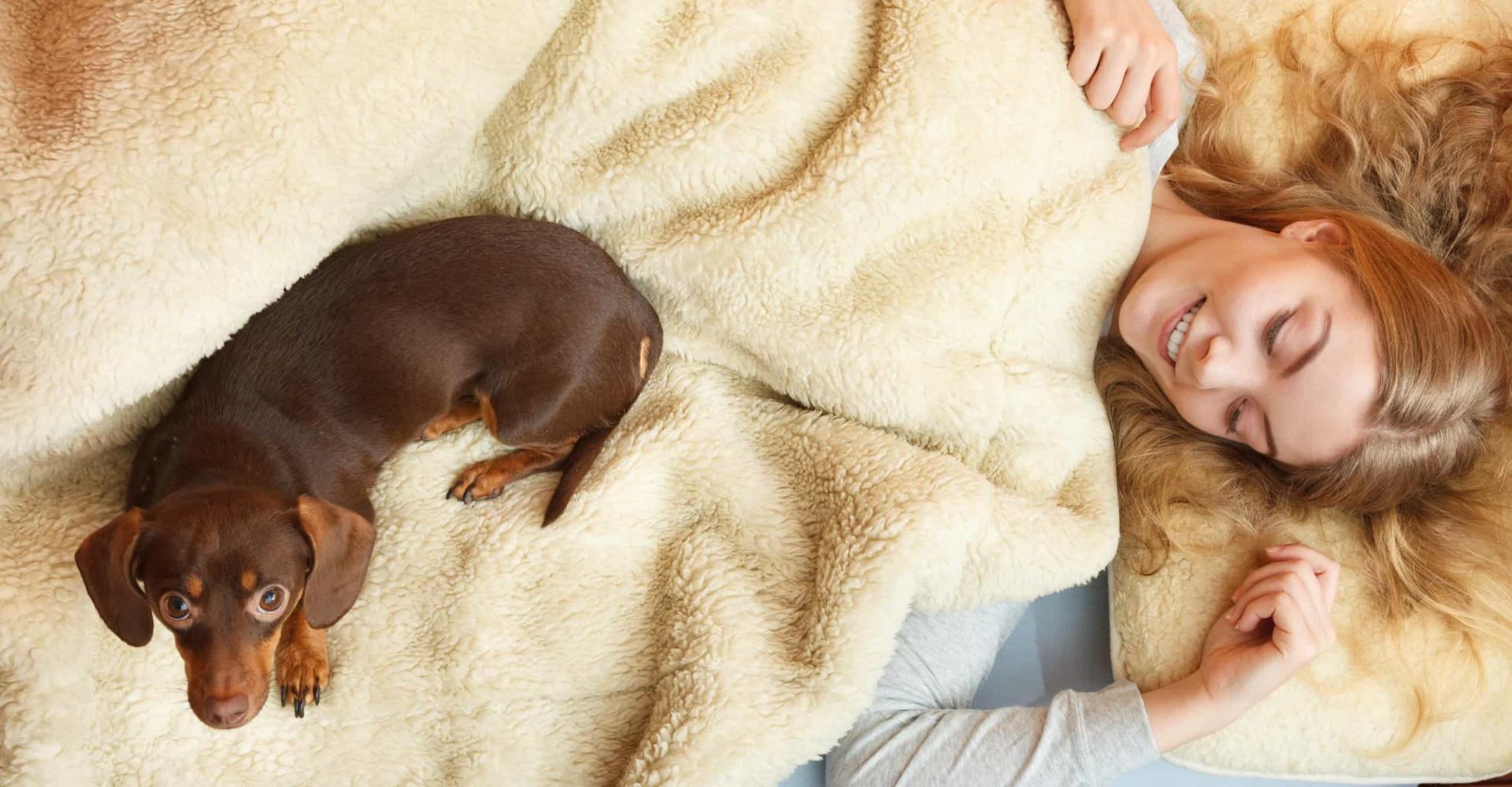 Women sleep better next to dogs than men, study says