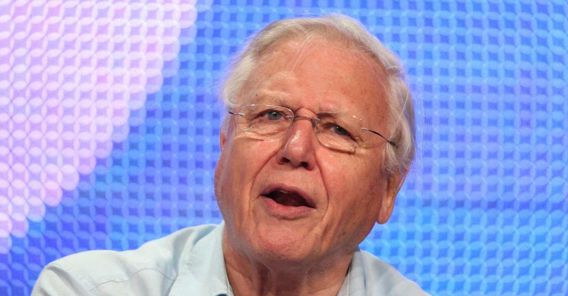 Derfor burde vi alle høre på David Attenborough