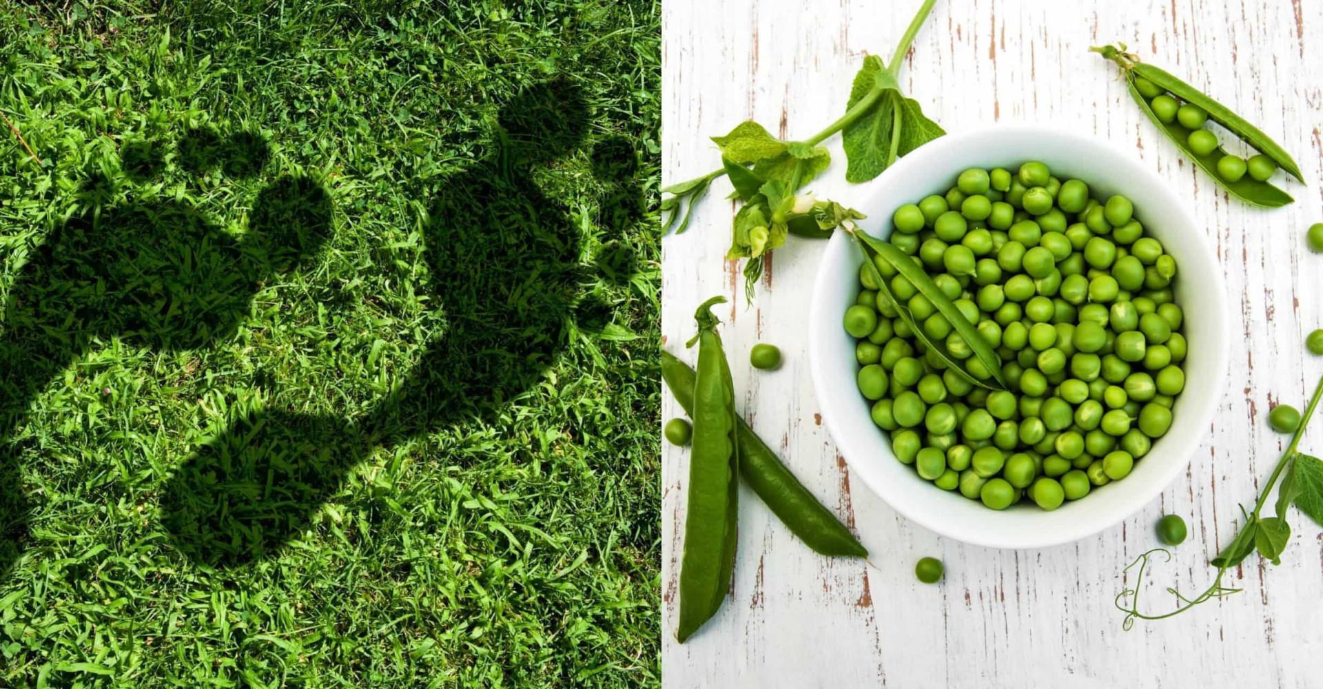 Vad lämnar din mat för klimatavtryck?