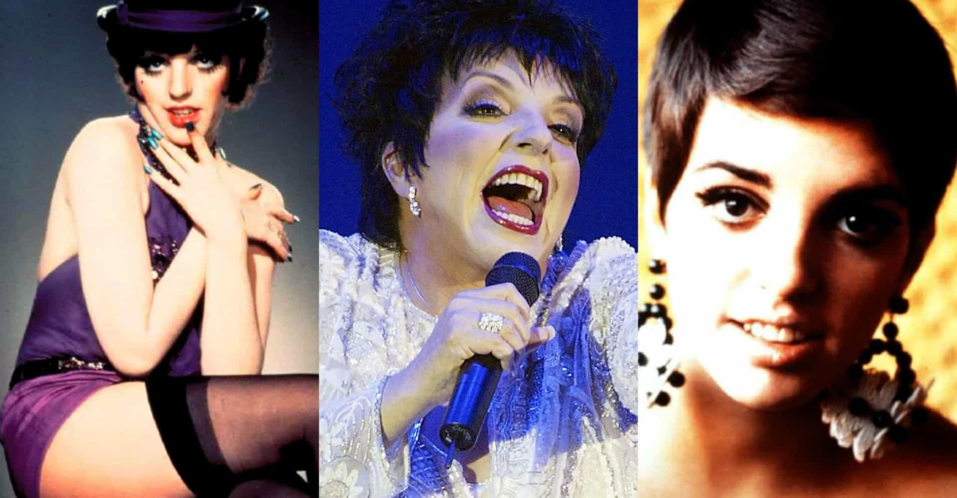 Liza Minnelli: a life in show business