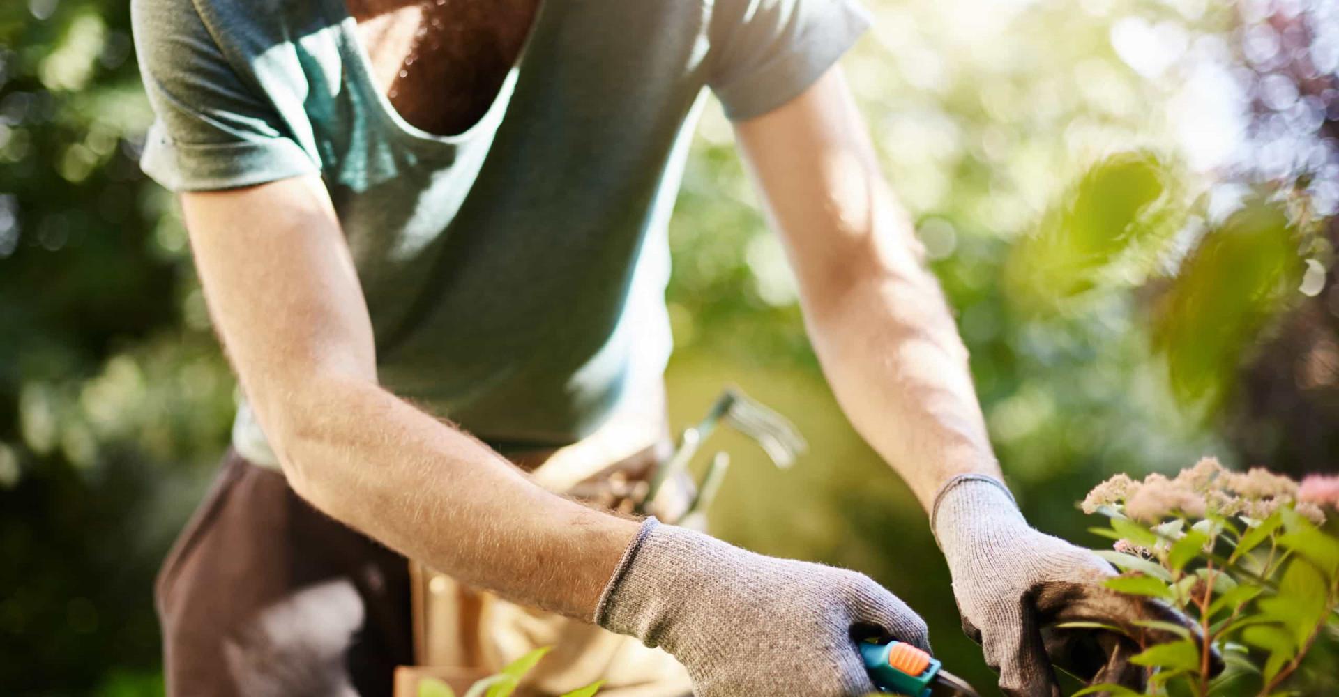 Tuinieren met BN'ers