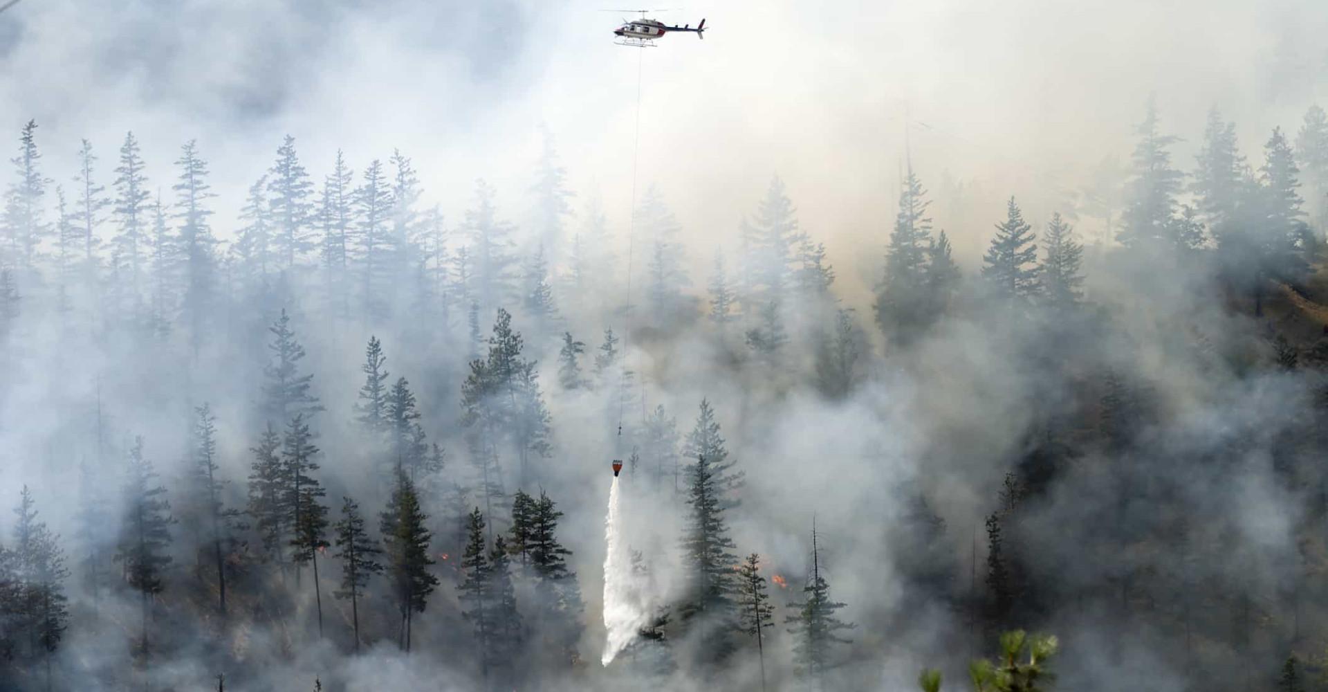 Os incêndios que marcaram a história da humanidade