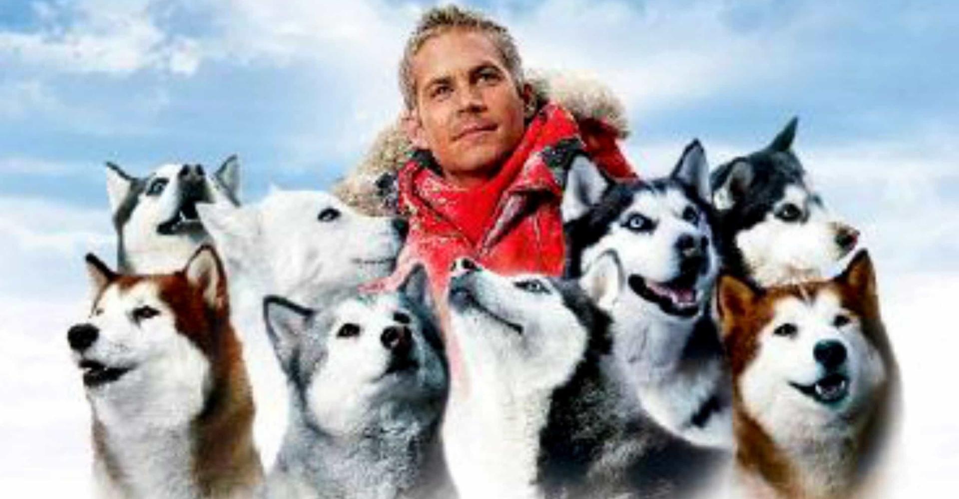 Cool biograf: De bedste film med vintertema