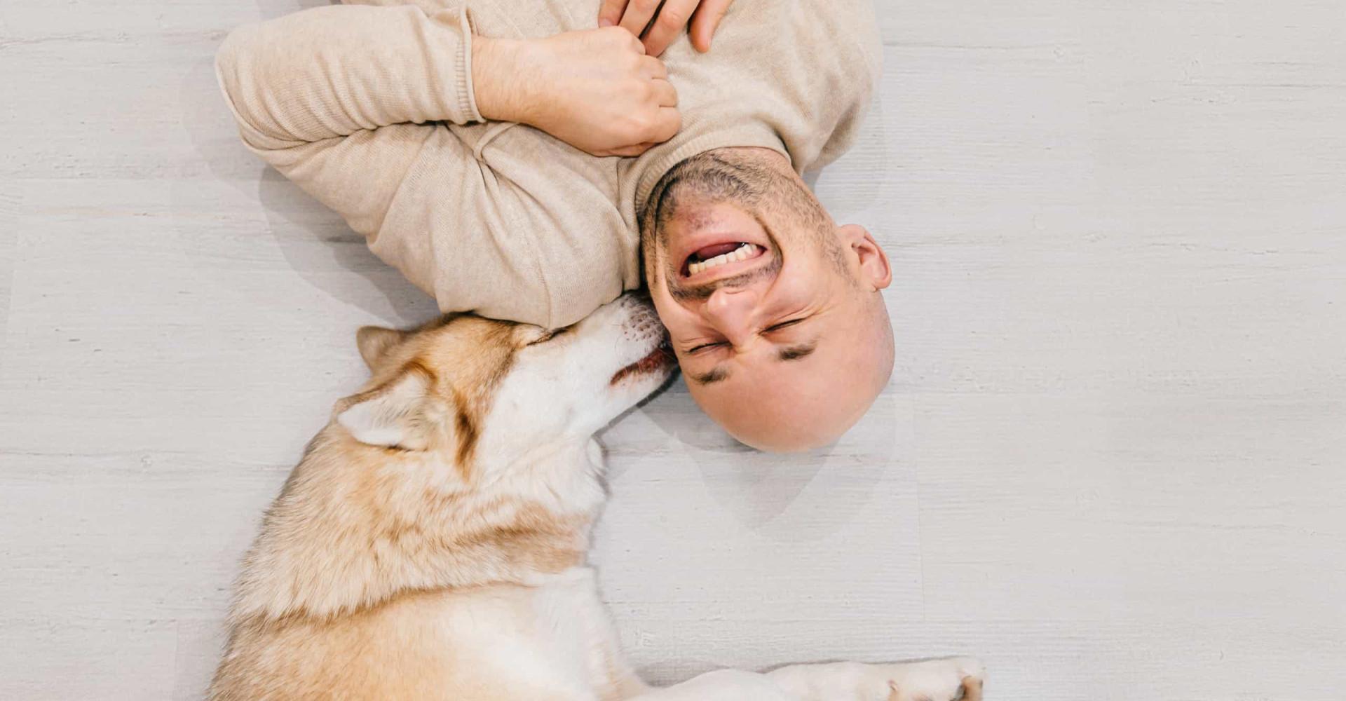 Aan deze signalen herken je of je hond gelukkig is