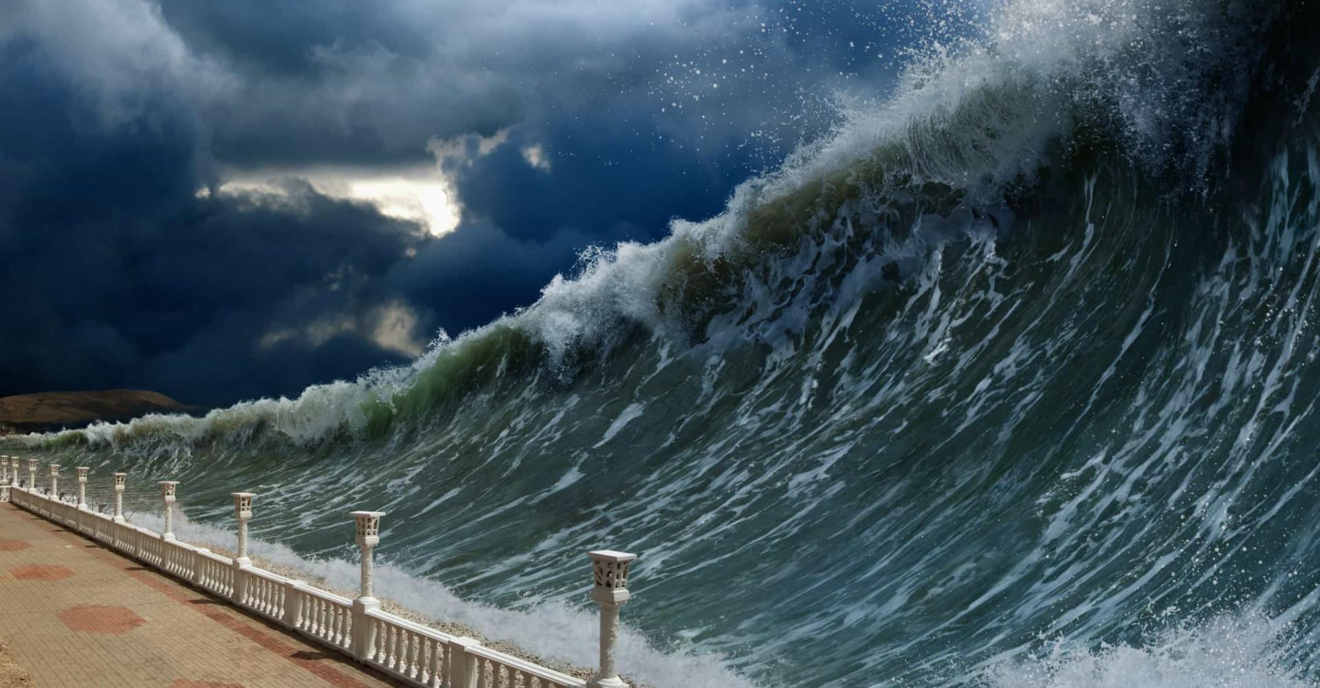 Quand le danger plane, la nature nous le signale