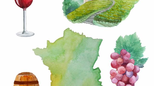 L'excellence du vin français