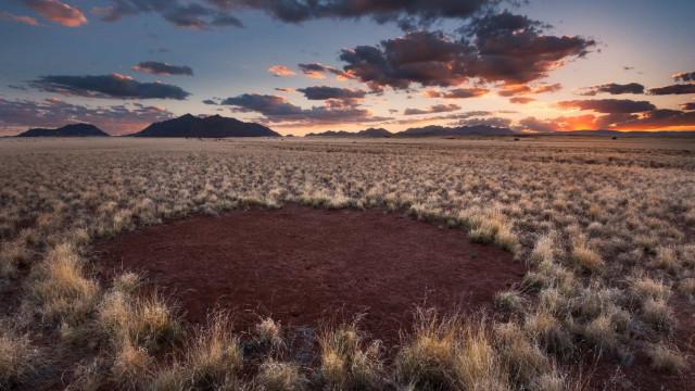 Cercles de fées: le mystérieux point commun entre la Namibie et l'Australie