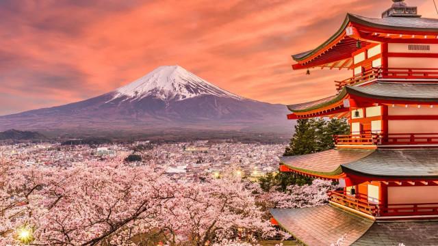 Japans körsbärsblomstersäsong har nu startat!