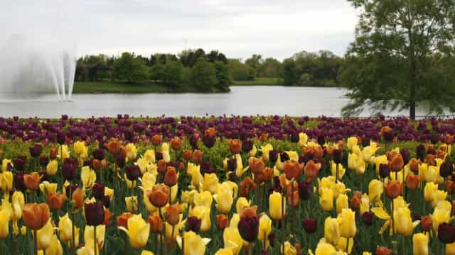 The most beautiful public gardens in the US to visit this spring