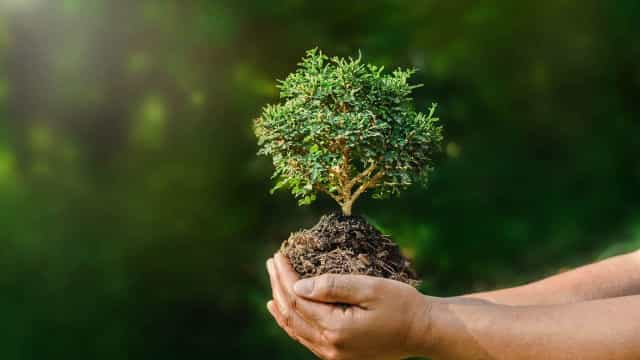 Eenvoudige veranderingen van levensstijl die het milieu ten goede komen