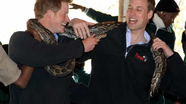 Il legame indissolubile e fraterno dei Principi William e Harry