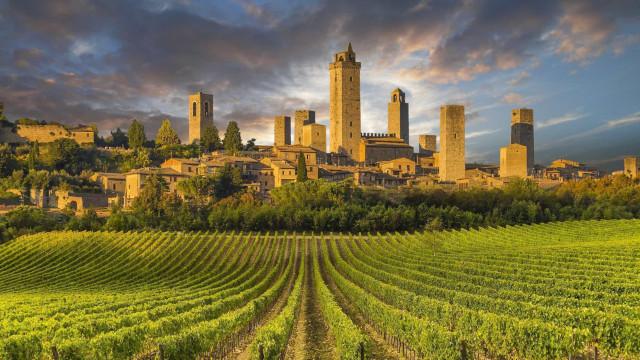 Das sind die weltweit berühmtesten Weinrouten