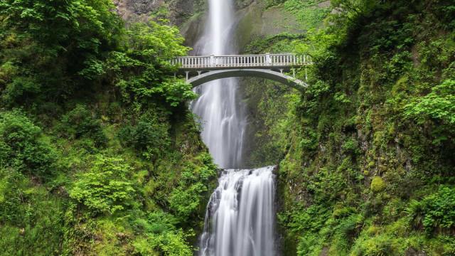 世界で最も美しい橋 - 世界中にあるこれらの橋の構造は、色々な形があります。