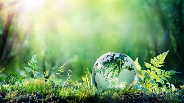 지구 생태 용량 초과의 날에 대해 아시나요?