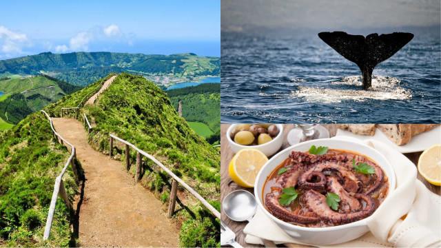 Alle Azzorre, tra distese di prati verdi e avvistamenti di balene
