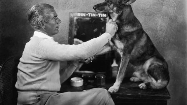 Los perros más impresionantes de la historia