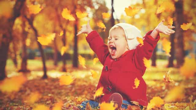 Stunning pictures of fall to celebrate its arrival