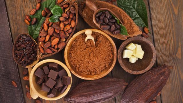 Blij nieuws: Nederland opent eerste cacao bar