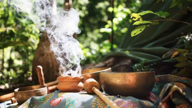 Delve into the fascinating ancient tradition of ayahuasca