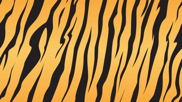 Addio a Keiichiro Kimura, creatore dell'indimenticabile Uomo Tigre