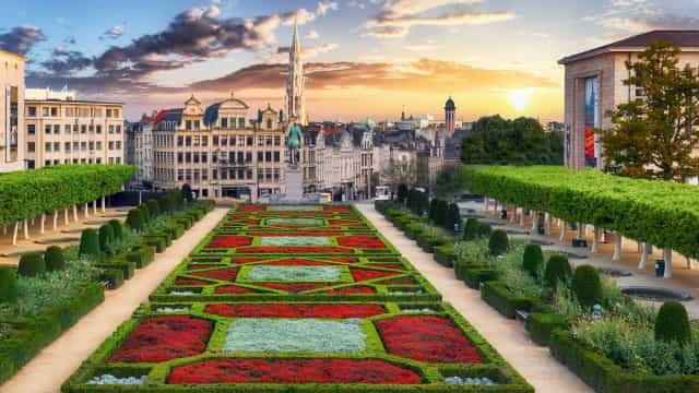 Insider Tips: why you have to visit bustling Belgium