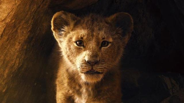 """Souvenir... Disney dévoile la bande-annonce de l'adaptation du """"Roi Lion"""""""