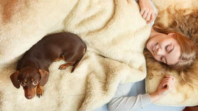 Women sleep better next to dogs than men, study says