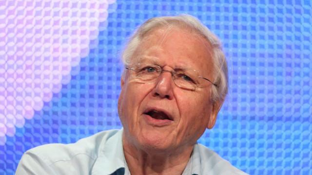 Miksi kaikkien kannattaisi kuunnella David Attenboroughia