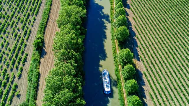 Insider Tips: Navigating the Canal du Midi